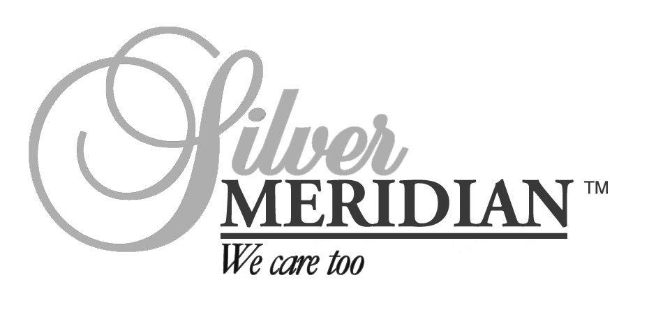 Silver Meridian